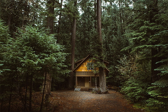 45 cozy-cabins-in-the-woods (22)