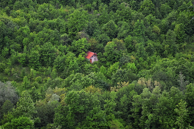 45 cozy-cabins-in-the-woods (24)