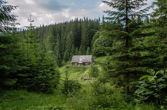 45 cozy-cabins-in-the-woods (31)