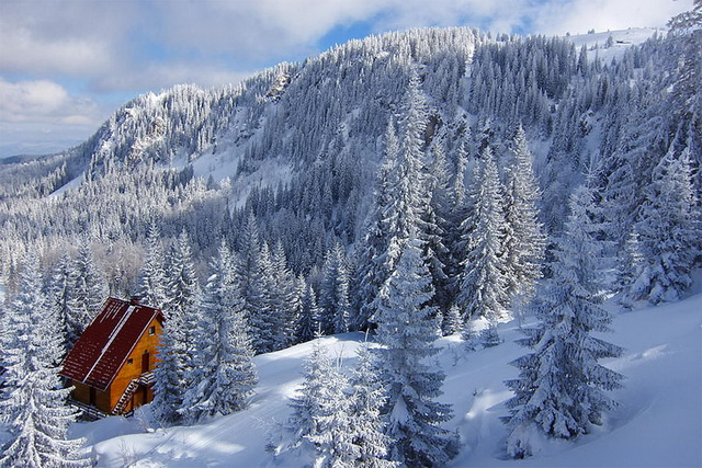45 cozy-cabins-in-the-woods (33)