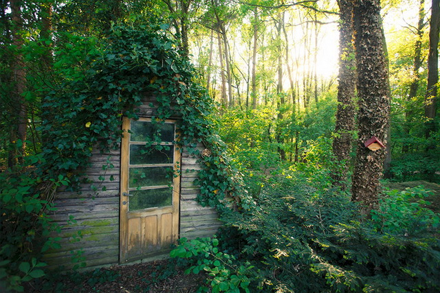 45 cozy-cabins-in-the-woods (39)
