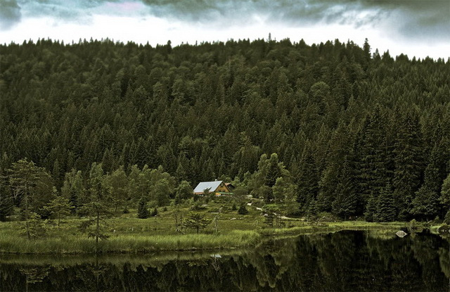 45 cozy-cabins-in-the-woods (42)