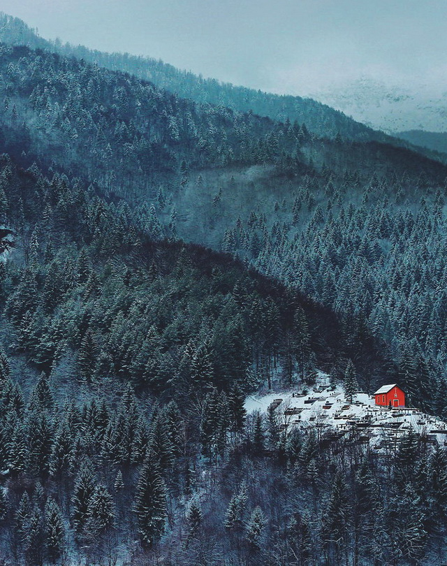 45 cozy-cabins-in-the-woods (6)