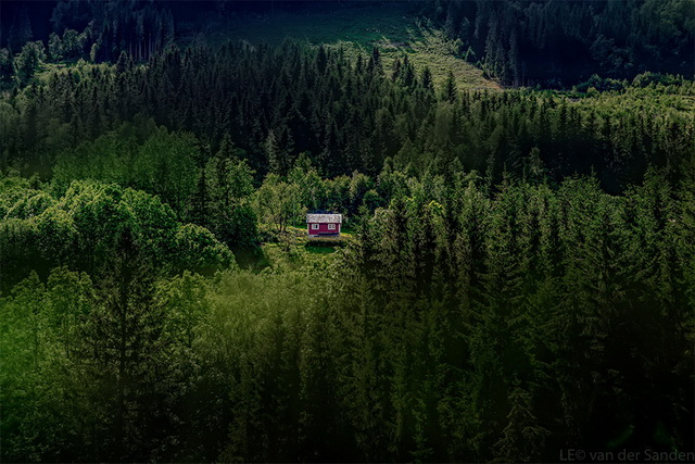 45 cozy-cabins-in-the-woods (8)