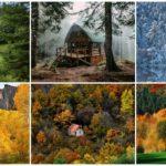 """ไปชม 45 ภาพ """"บ้านน้อยในป่าใหญ่"""" ใช้ชีวิตอยู่กับธรรมชาติอย่างแท้จริง"""