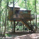 บ้านสวนสไตล์เคบิน ยกพื้นสูงแบบบ้านต้นไม้ ท่ามกลางบรรยากาศแบบสวนป่า