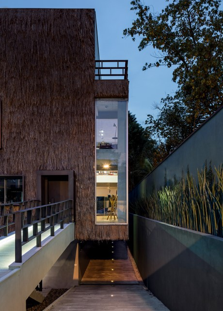 concrete-house-modern-palm-fibre-9