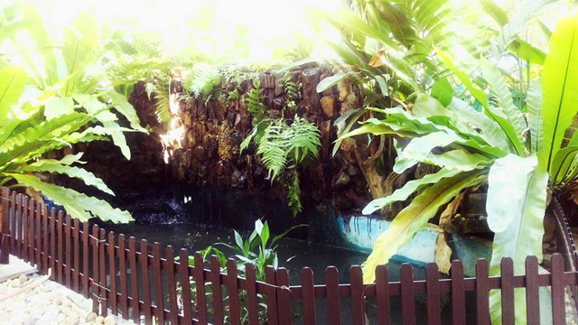 gorgeous-waterfall-fish-pond-review-49