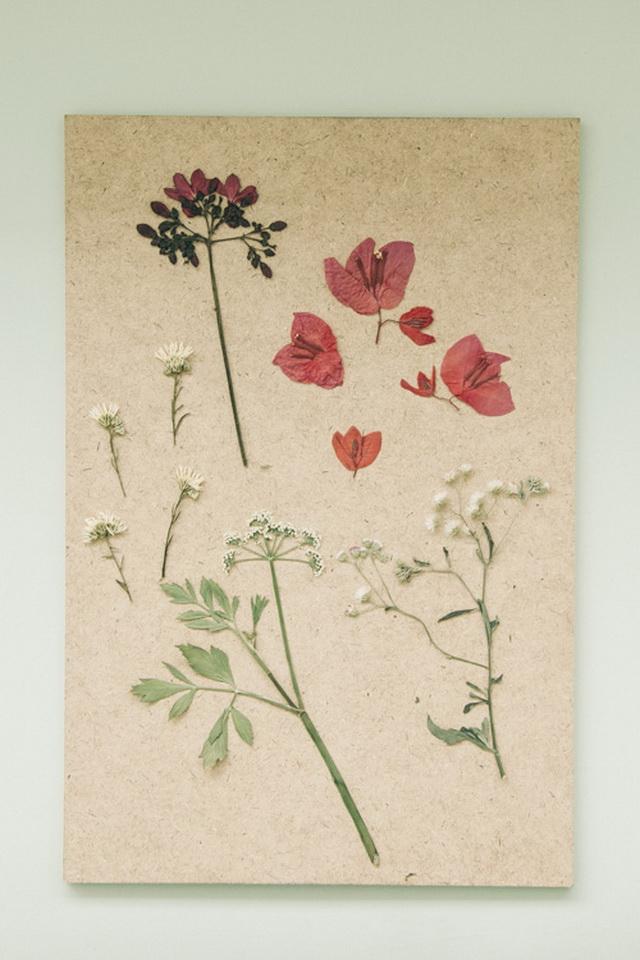 how-to-make-dried-flowers-like-a-pro-diy-10