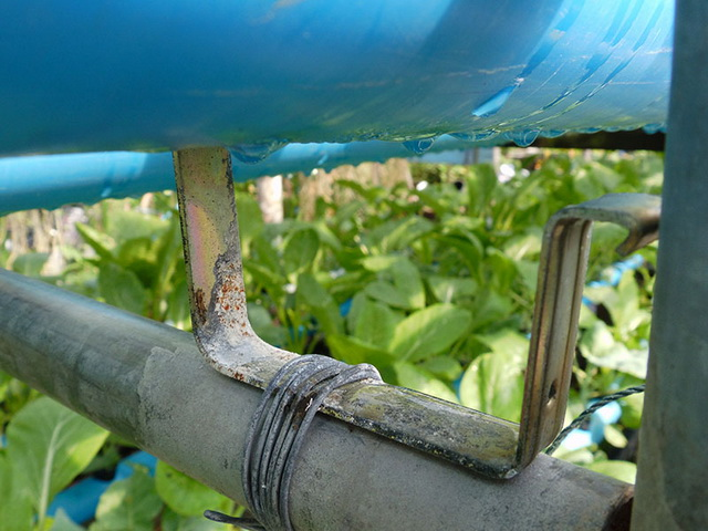 hydroponic-plant-from-pvc-diy-15