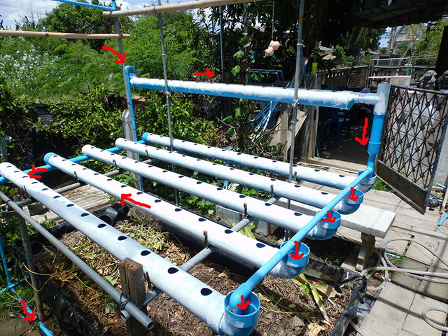 hydroponic-plant-from-pvc-diy-18