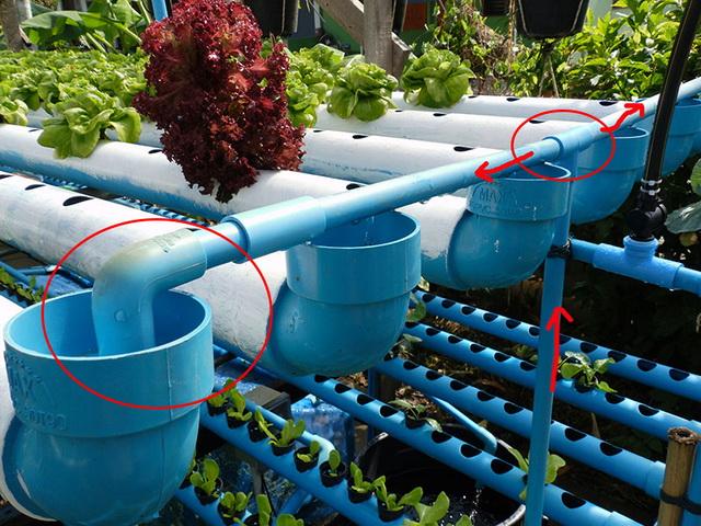 hydroponic-plant-from-pvc-diy-21