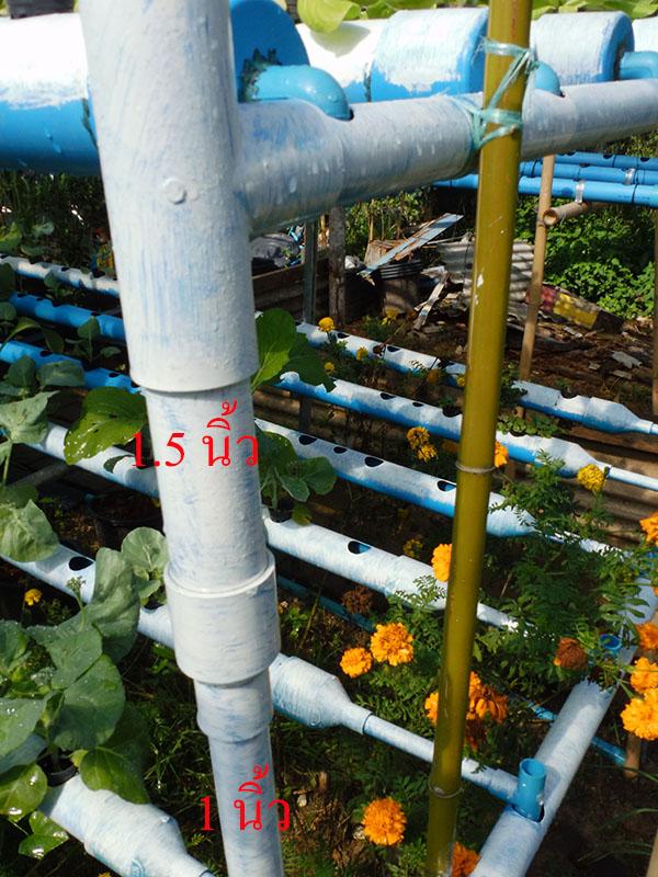 hydroponic-plant-from-pvc-diy-25