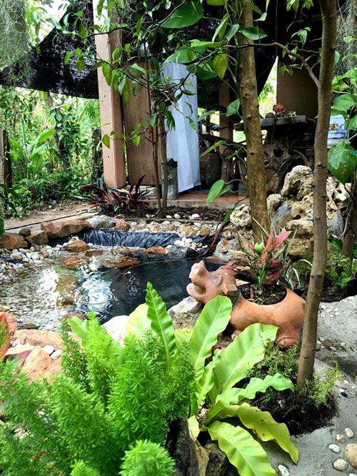 inexpensive-beautiful-fish-pond-garden-review-1