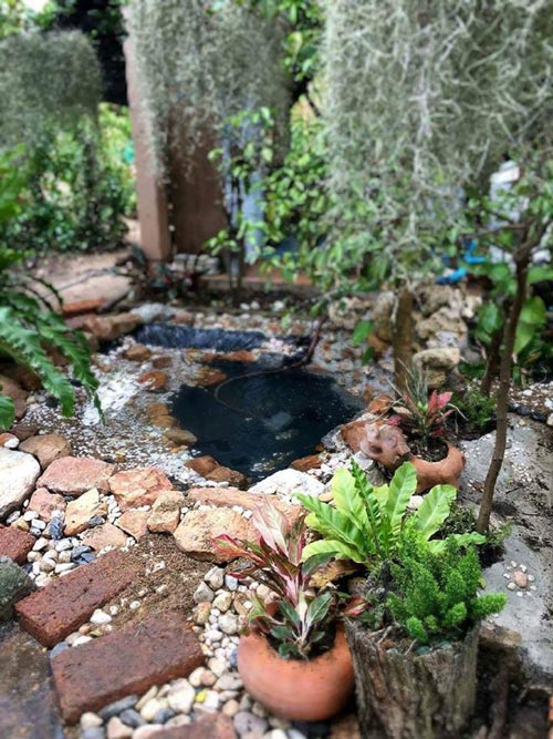 inexpensive-beautiful-fish-pond-garden-review-13