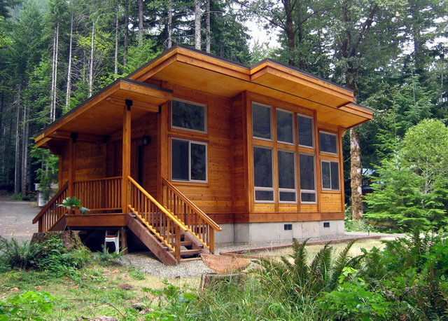 modern cabin with base in greenery forest