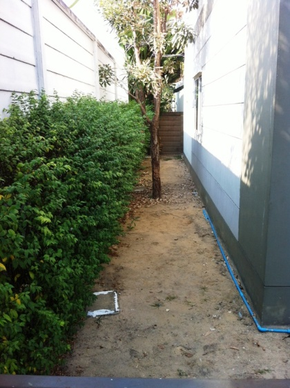 narrow-and-long-gardening-review (1)