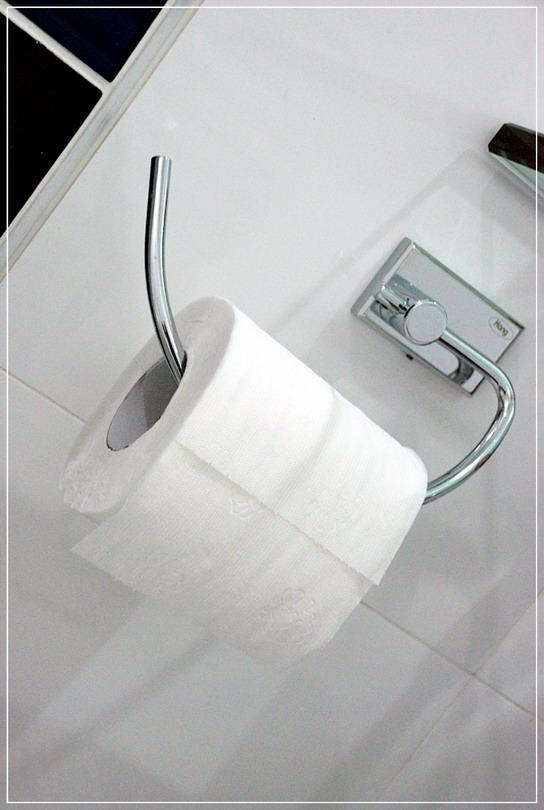 old-restroom-to-modern-restroom-renovation-29