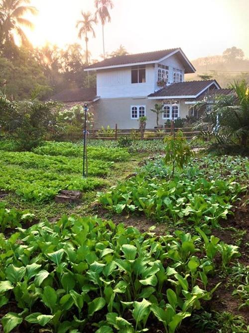 renovate-20-yrs-old-house-to-gorgeous-farmhouse (27)