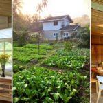 เปลี่ยนบ้านเก่าอายุ 20 ปี ให้กลายเป็นบ้านสวนบรรยากาศดี มีแปลงผักออกแกนิกส์ ใกล้ชิดธรรมชาติแสนรื่นรมย์