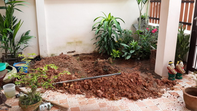 small garden besides house review (1)