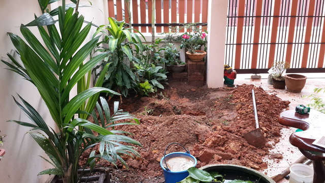 small garden besides house review (2)