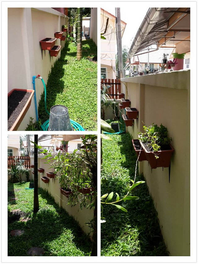 small garden besides house review (6)