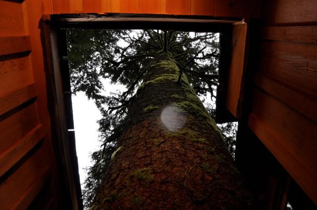 tree house ideas for the garden home (2)