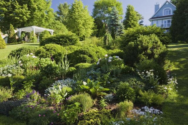 15-landscape-in-front-yard-ideas-26