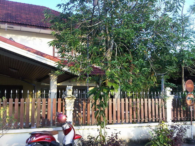18-yrs-modern-classic-house-renovation-review-1