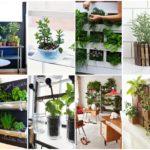 """36 ไอเดีย """"สวนผักขนาดจิ๋ว"""" สร้างง่าย ทำได้จริง จากการ DIY ของใช้ใกล้ตัว"""