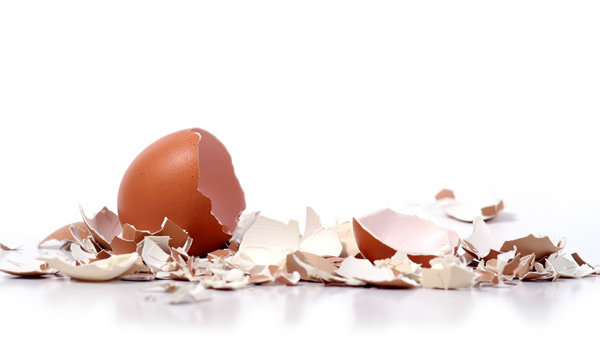 9-unbelieveable-uses-of-eggshell-3