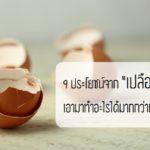 """9 ประโยชน์จาก """"เปลือกไข่"""" เอามาทำอะไรได้มากกว่าที่คิด รู้แล้วจะไม่อยากทิ้งอีกต่อไป!!"""