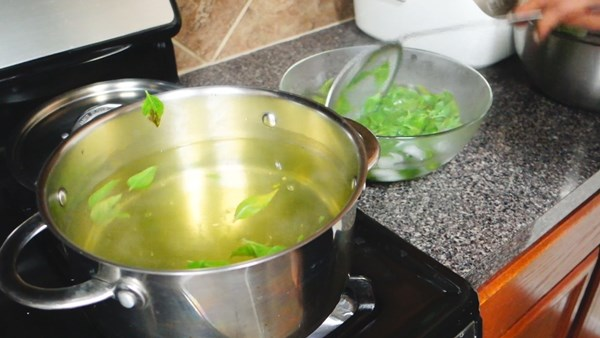 how-to-keep-basil-leaves-in-freeze-11