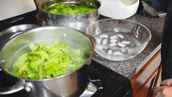 how-to-keep-basil-leaves-in-freeze-17