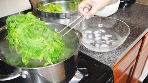 how-to-keep-basil-leaves-in-freeze-19