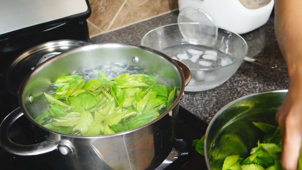 how-to-keep-basil-leaves-in-freeze-9