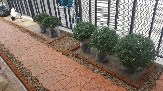 small-garden-and-stamp-concrete-path-review-16
