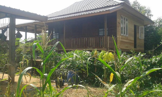small-wood-raised-up-house-in-countryside-review-29