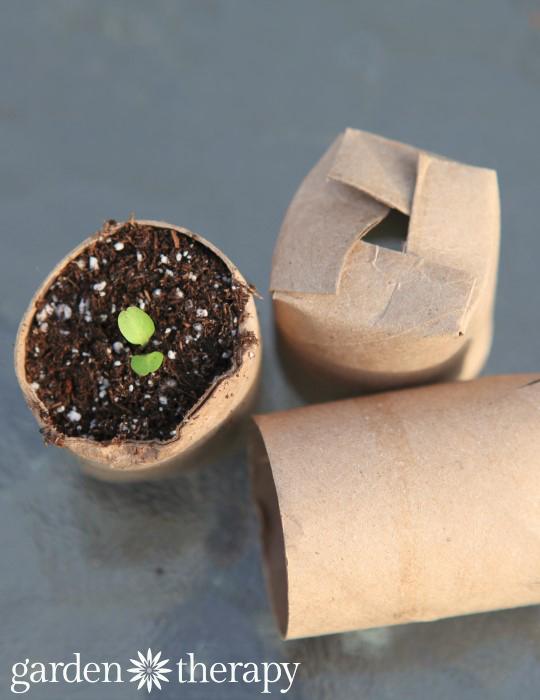 11-toilet-paper-roll-diy-ideas-4