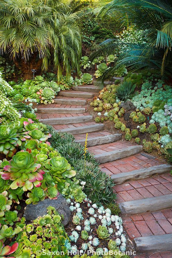 15-texture-ideas-for-garden-pathway-14