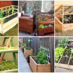 """ไอเดีย 35 """"แปลงผัก"""" DIY จากงานไม้ และของเหลือใช้ ได้ประโยชน์ และความสวยงาม ตกแต่งสวนไปในตัว"""