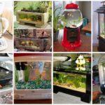ไอเดีย 44 ตู้ปลา DIY สร้างจากของเหลือใช้ และปรับตกแต่งมุมโปรดภายในบ้าน ให้สวยงาม และอ่อนโยน