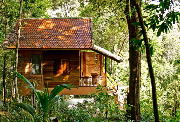 eco-wooden-resort-cottage-in-jungle-1