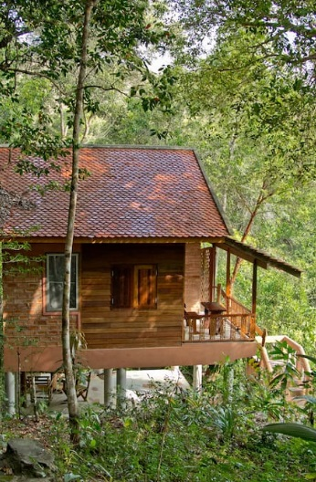 eco-wooden-resort-cottage-in-jungle-2