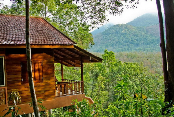 eco-wooden-resort-cottage-in-jungle-4