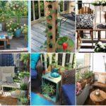 อัพเดท!! 45 แบบสวนหย่อมบนระเบียง พื้นที่เล็กๆก็สวยได้ ที่เป็นได้มากกว่าระเบียงตากผ้า