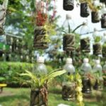 """37 ไอเดียแต่งสวนด้วย """"ขวดพลาสติก"""" เนรมิตขยะให้กลายของประดับสวน สร้างสรรค์ได้ไม่รู้จบ"""
