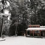 บ้านท้ายสวน สไตล์เคบิน หลังเล็กๆ วัสดุจากไม้ ไอเดียที่เหมาะกับบ้านสวน บ้านตากอากาศ