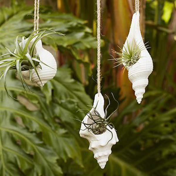 hanging-planter-ideas-woohome-23